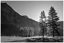 Sun and Ahwanhee Meadows in spring. Yosemite National Park ( black and white)