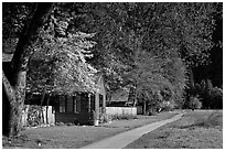 Employee housing in the spring. Yosemite National Park, California, USA. (black and white)