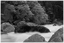 Merced River whitewater in spring. Yosemite National Park ( black and white)
