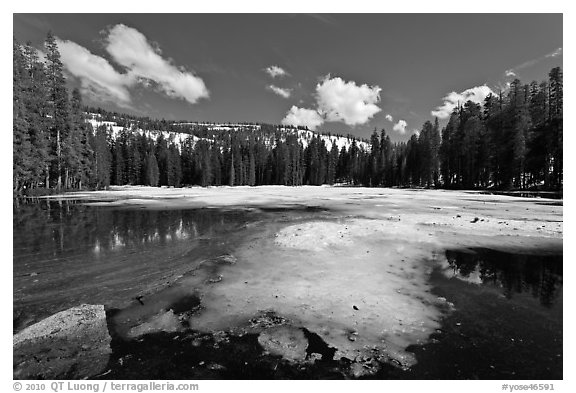 Siesta Lake, early spring. Yosemite National Park (black and white)