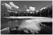 Siesta Lake, early spring. Yosemite National Park ( black and white)