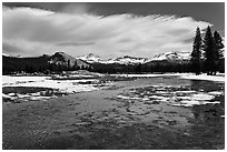 Flooded Twolumne Meadows in spring. Yosemite National Park, California, USA. (black and white)