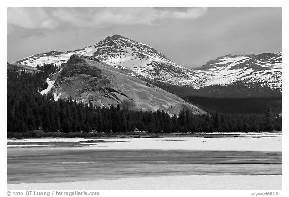 Lambert Dome surrounded by snowy peaks and meadows. Yosemite National Park (black and white)
