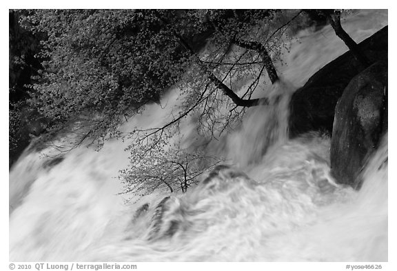 Raging waters, Cascade Creek. Yosemite National Park (black and white)