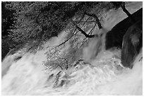 Raging waters, Cascade Creek. Yosemite National Park ( black and white)