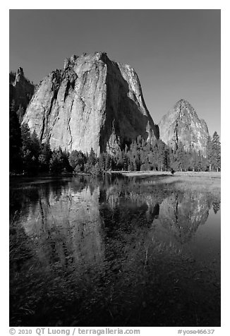 Cathedral Rocks reflected in flooded El Capitan Meadow. Yosemite National Park (black and white)