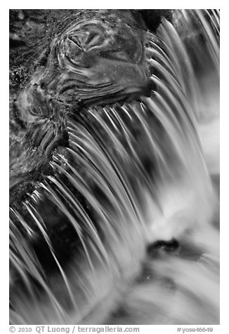 Fern Spring forest reflections and cascade. Yosemite National Park (black and white)