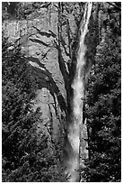 Trees, Ribbon Falls and cliffs. Yosemite National Park ( black and white)