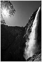 Upper Yosemite Fall and Sun. Yosemite National Park ( black and white)