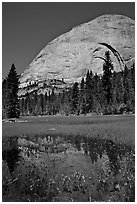Half-Dome reflected in Lost Lake. Yosemite National Park ( black and white)
