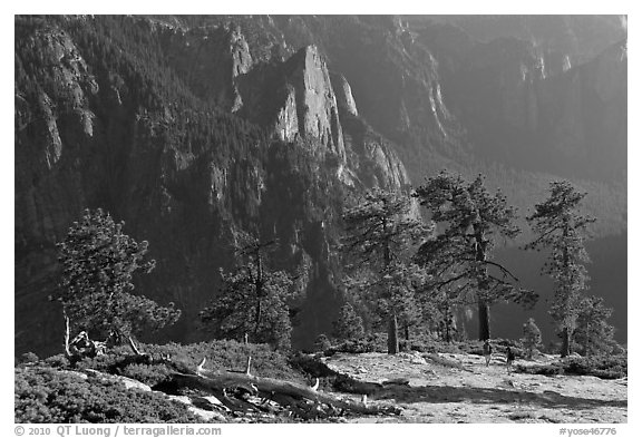 Sentinel Rock and valley from North Dome. Yosemite National Park (black and white)