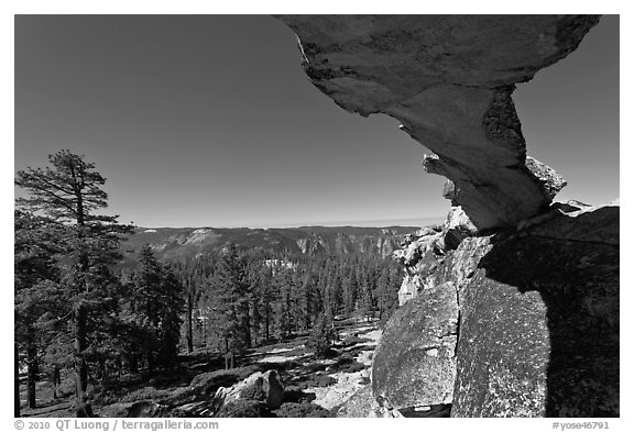 Indian Rock arch and forest, morning. Yosemite National Park (black and white)