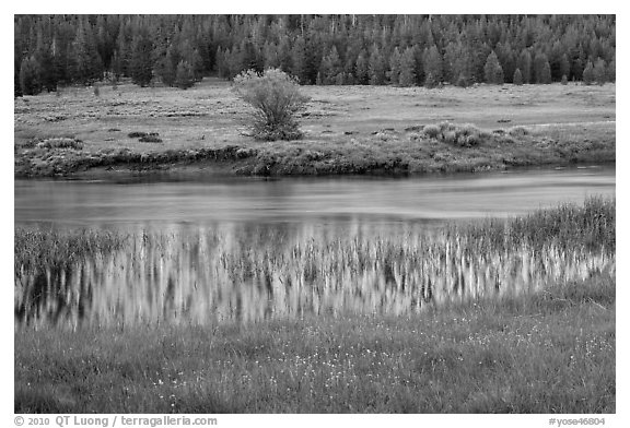 Hills reflected in stream, Lyell Canyon. Yosemite National Park (black and white)
