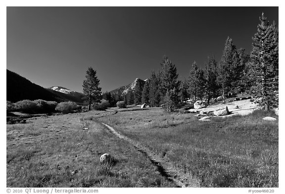 Pacific Crest Trail, Lyell Canyon. Yosemite National Park (black and white)