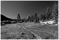 Pacific Crest Trail, Lyell Canyon. Yosemite National Park, California, USA. (black and white)