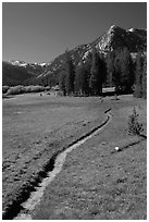 John Muir Trail, Lyell Canyon. Yosemite National Park, California, USA. (black and white)