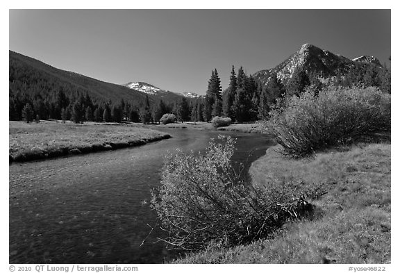 Tuolumne River in Lyell Canyon, morning. Yosemite National Park (black and white)
