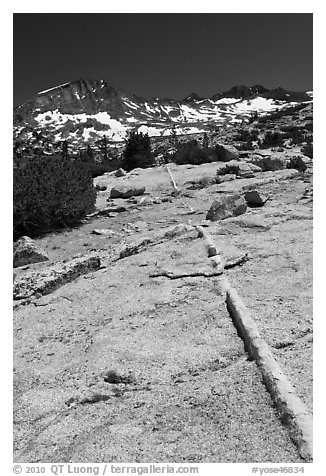Slabs and Lyell Peak in distance. Yosemite National Park (black and white)