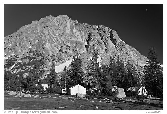 Tents of Sierra High camp, Vogelsang. Yosemite National Park (black and white)