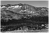 High Sierra view from Vogelsang Pass above Lewis Creek with Bernice Lake. Yosemite National Park ( black and white)