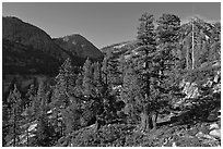 Canyon near Merced Lake. Yosemite National Park ( black and white)