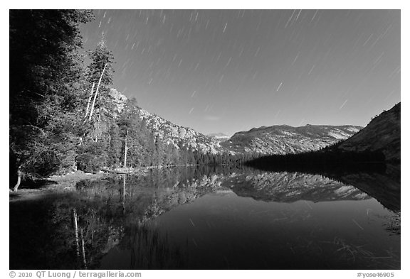 Merced Lake, tall trees, and stars. Yosemite National Park (black and white)