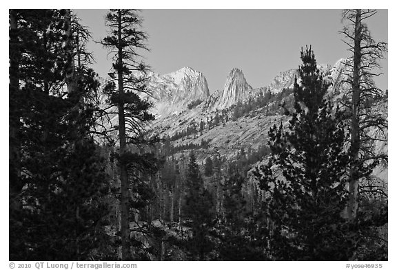 Matthews Crest from Cathedral Fork, dusk. Yosemite National Park, California, USA.