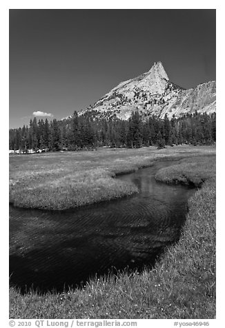 Stream and Cathedral Peak. Yosemite National Park (black and white)