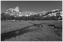 Meadow, stream, Cathedral range. Yosemite National Park ( black and white)