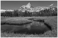 Cathedral Peak reflected in meandering stream. Yosemite National Park ( black and white)