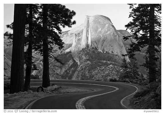 Half-Dome seen from road near Washburn Point. Yosemite National Park (black and white)