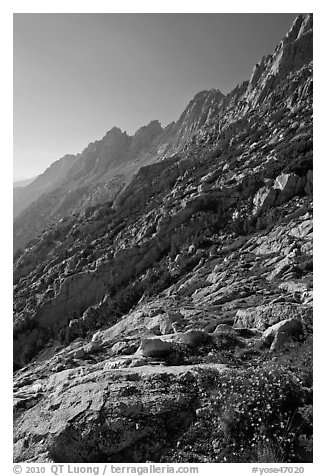 Shepherd Crest, late afternoon. Yosemite National Park (black and white)