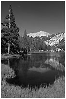 Middle Young Lake, afternoon. Yosemite National Park ( black and white)