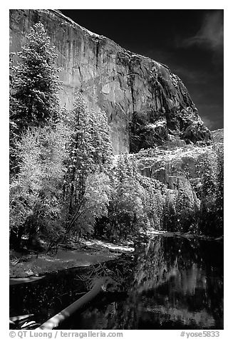 East Face of El Capitan and Merced River in winter. Yosemite National Park (black and white)