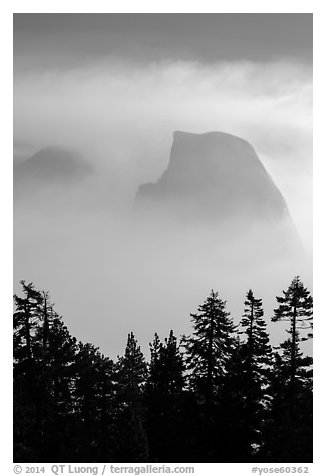 Half-Dome and Clouds Rest in fog above tree line. Yosemite National Park (black and white)