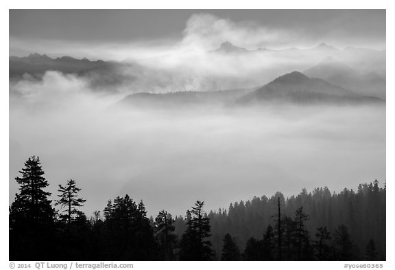 Valley below Clark Range filled with smoke. Yosemite National Park (black and white)