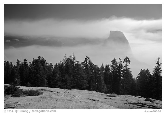 Half-Dome with fog clearing from Sentinel Dome. Yosemite National Park (black and white)