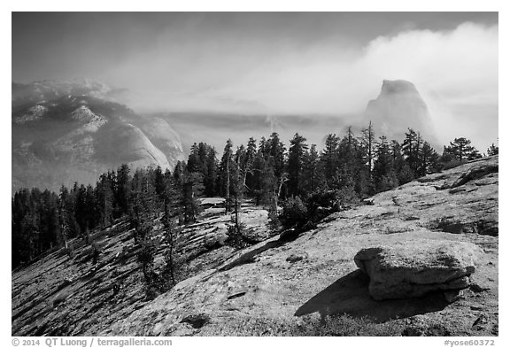 Foggy valley and Half-Dome from Sentinel Dome. Yosemite National Park (black and white)