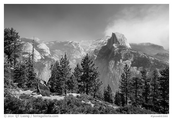 Visitor looking, Glacier Point. Yosemite National Park (black and white)