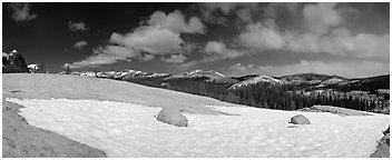 Tuolumne Meadows, neve and domes. Yosemite National Park (Panoramic black and white)