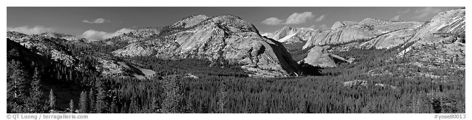 Granite domes and Tenaya Lake. Yosemite National Park (black and white)