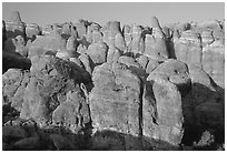 Sandstone fins at Fiery Furnace, sunset. Arches National Park, Utah, USA. (black and white)