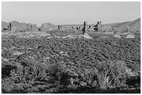 Desert shrub, flatlands, and Windows group in distance. Arches National Park, Utah, USA. (black and white)