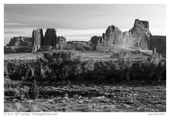 Cottonwoods of Courthouse Wash and Courthouse Towers. Arches National Park (black and white)