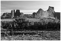 Cottonwoods of Courthouse Wash and Courthouse Towers. Arches National Park, Utah, USA. (black and white)