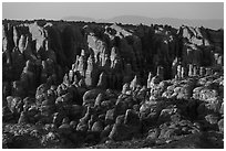 Fiery Furnace fins on hillside. Arches National Park ( black and white)