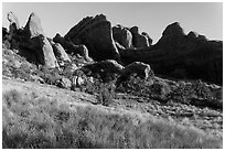 Fins in Devils Garden. Arches National Park ( black and white)