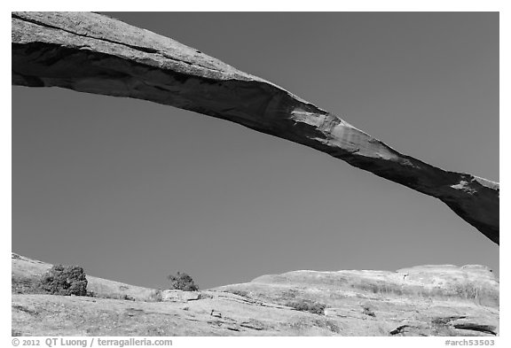 Span of Landscape Arch, longuest natural arch. Arches National Park (black and white)