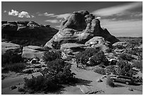 Devils Garden Campground. Arches National Park ( black and white)