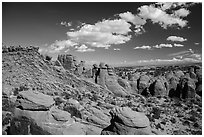 Entrada sandstone fins. Arches National Park, Utah, USA. (black and white)